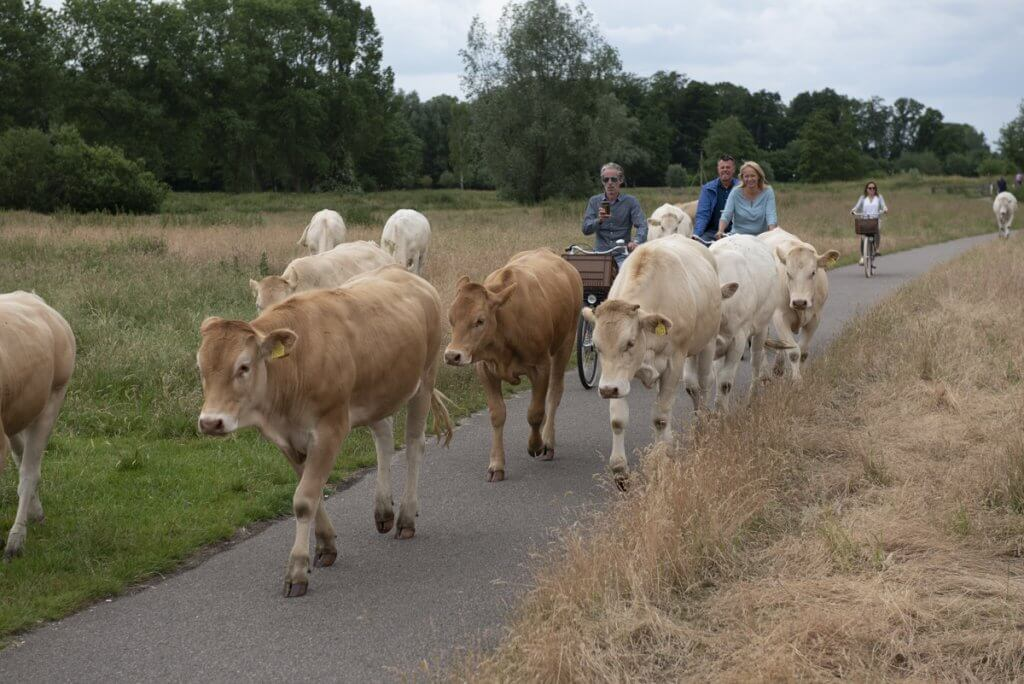 Mooie fietsroutes in en om Breda!